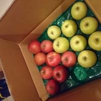 今年も産直りんご