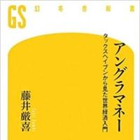 藤井厳喜『アングラマネーとJPモルガン・スキャンダル①【再】』AJER2017.6.24
