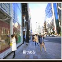 「街撮り今日の一枚・photoブログ」