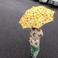 上手に傘をさす孫