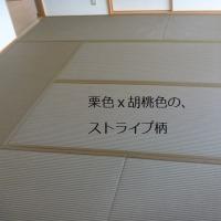 カラー畳 2016