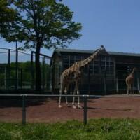 東松山子供動物自然公園