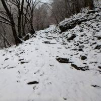 英彦山へ(霧氷の今年初登山)
