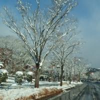 雪の瑠璃光寺五重塔