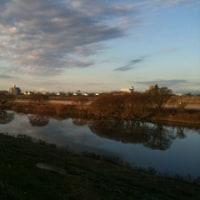 本日の江戸川
