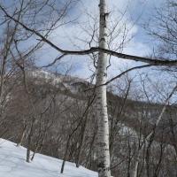 飯縄山登山 (標高 1,917m 長野市)(1)【一の鳥居~冬道ルート~山頂】
