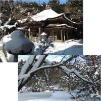 雪の極楽寺・蛇の池