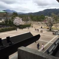 ロームシアター京都(その2)