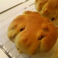 家パン~クルミのプティジュネ