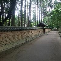 ブログ160530 唐招提寺 ~宝蔵から滄海、開山御廟