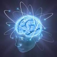 ストレスと脳の関係!