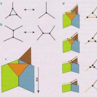 「スピンの泡」が時空に対応する、ループ量子重力