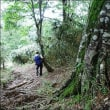 兵庫県の最高峰へ その3