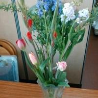 3月1回目の花