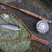 五月釣行 山梨の里川でヤマメ釣り