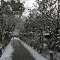 京都は今日も雪~隠れ家は!!