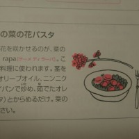 菜の花パスタ③