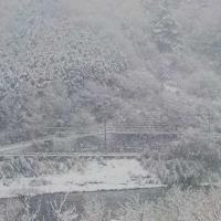 雪*雪*真っ白け!!