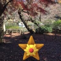 ポケモンGO 井の頭恩賜公園