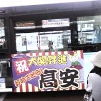 【2拠点生活】大関「高安」フィーバー続く/土浦市