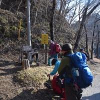 シモンさんと山探検・鷹巣山