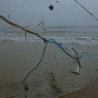 海にやさしい網漁具