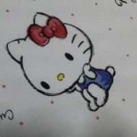 【静電気・電磁波対策:キティちゃん第二弾!!】喜んで頂くためにはケチれません(笑)