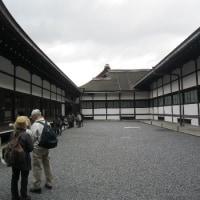京都御所 (11/29*火)