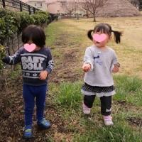 2017年3月29日(水)の【写真館】