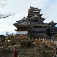 松本城の冬支度