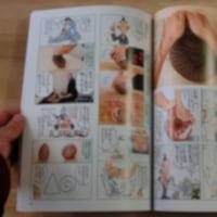 「陶工房」誌、発売