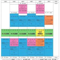 2017 1月~レッスンスケジュール