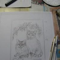 うちの猫七宝