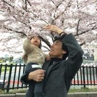 春ですね~(*^^*)