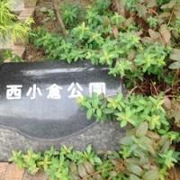 10月26日 朝の奉仕活動・ご褒美