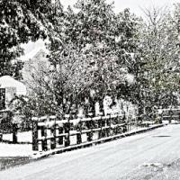 11月に雪が降るなんてね