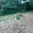 草刈&農作業
