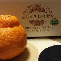 熊本--デコポン