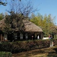 世田谷の保育園で活弁上映会