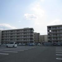 SBT調査員の福島日記 【最終回】