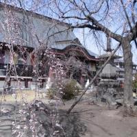 滝の慈眼寺