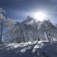 斑尾高原のゲレンデの風景‼︎