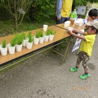 「親子で田植え」が開催されました。
