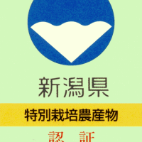 H29年度産 新潟県認証特別栽培米の申請書を提出