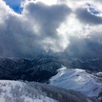 春は遠く 、、、白い雪原