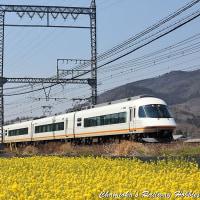 【鉄道写真】菜の花と近鉄特急~近鉄特急を撮る(12)~