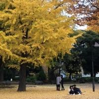 晩秋の上野公園