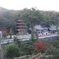 国宝明王院(広島県福山市)の不思議を解説します。