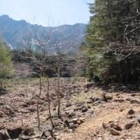 平日の静かな山を楽しむはずが… 横岳 vol. 1