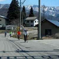 サイクリングの季節